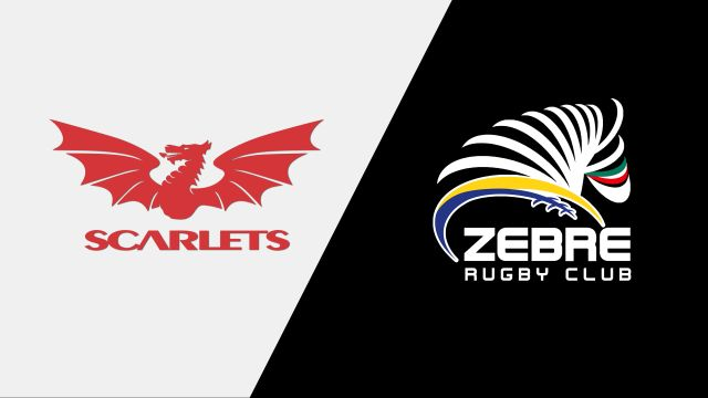 Scarlets vs. Zebre Rugby Club (Guinness PRO14 Rugby)