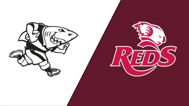 Sharks vs. Reds