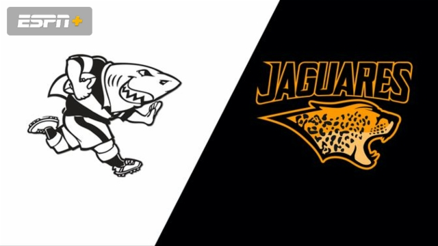 Sharks vs. Jaguares (Super Rugby)