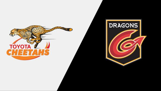 Cheetahs vs. Dragons (Guinness PRO14 Rugby)