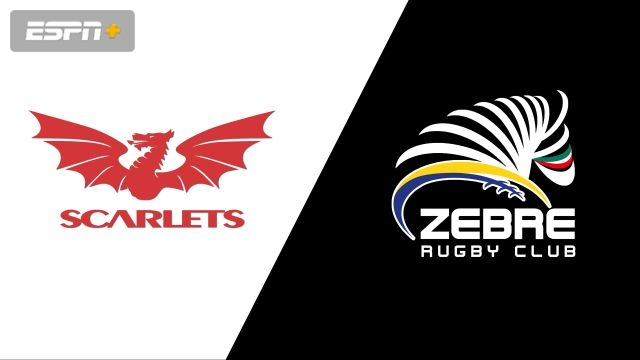 Zebre Rugby Club vs. Scarlets (Guinness PRO14 Rugby)