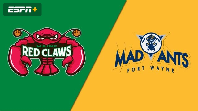 Maine Red Claws vs. Fort Wayne Mad Ants