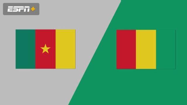 Cameroon vs. Guinea