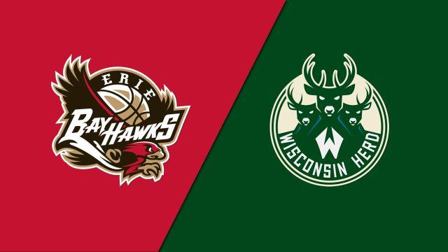 Erie BayHawks vs. Wisconsin Herd