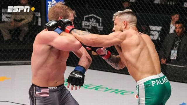 PFL Playoffs: Featherweight and Lightweight