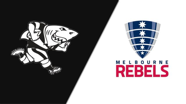 Sharks vs. Rebels