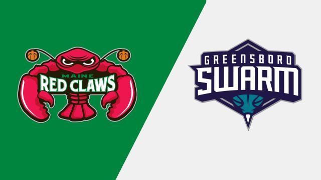 Maine Red Claws vs. Greensboro Swarm