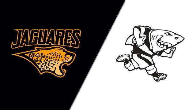Jaguares vs. Sharks (Super Rugby)