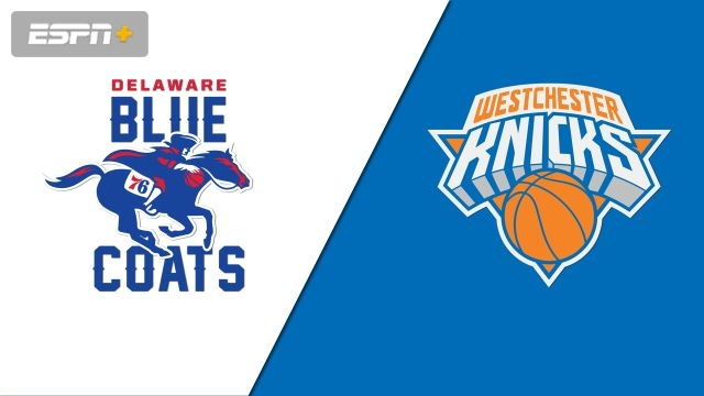 Delaware Blue Coats vs. Westchester Knicks