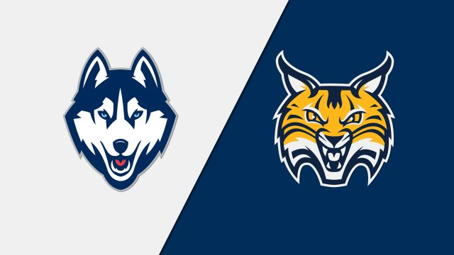Quinnipiac vs. Connecticut (W Hockey)