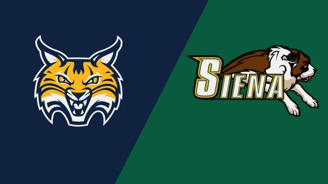 Quinnipiac vs. Siena (Game 8)