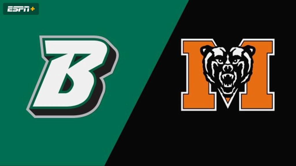 Binghamton vs. Mercer (Baseball)
