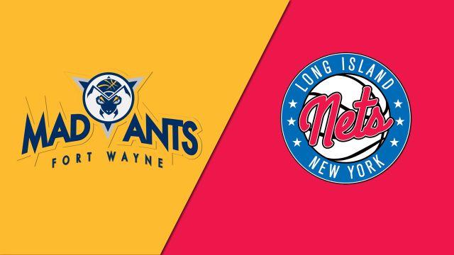 Fort Wayne Mad Ants vs. Long Island Nets