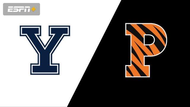 Yale vs. Princeton (Championship) (W Volleyball)