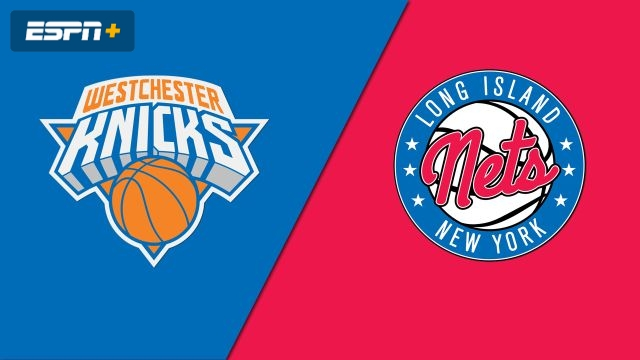 Westchester Knicks vs. Long Island Nets