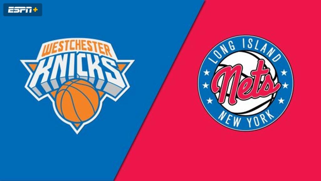 Westchester Knicks vs. Long Island Nets