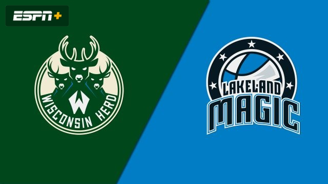 Wisconsin Herd vs. Lakeland Magic