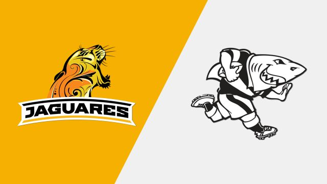 Jaguares vs. Sharks (Super Rugby)