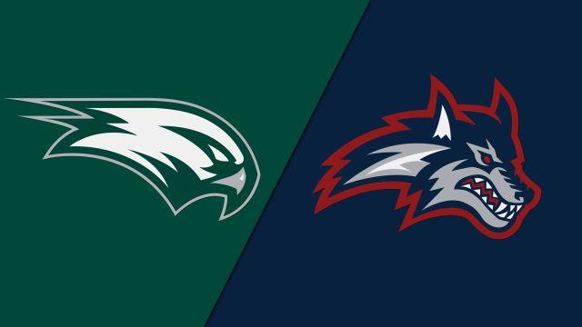 Wagner vs. Stony Brook (W Basketball)