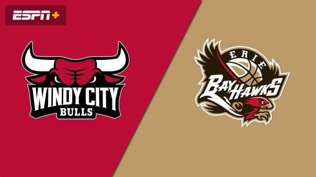 Windy City Bulls vs. Erie BayHawks