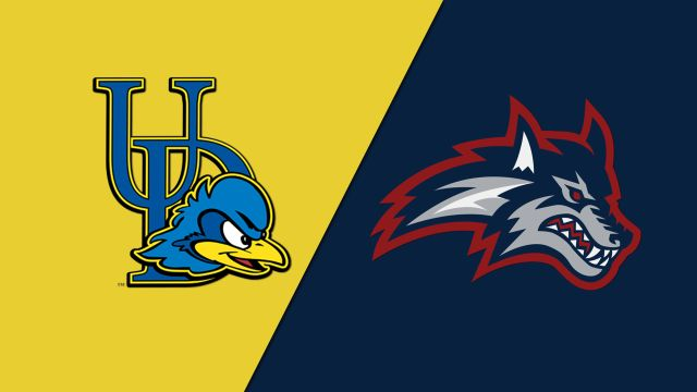 Delaware vs. Stony Brook (M Basketball)