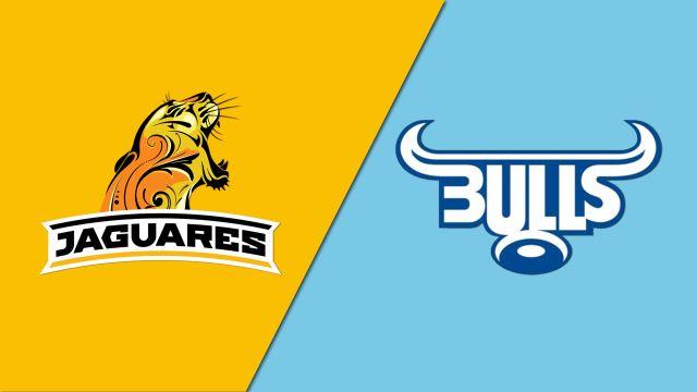 Jaguares vs. Bulls (Super Rugby)
