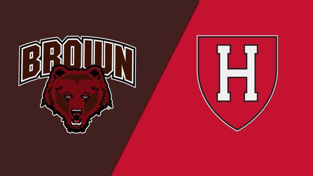 Brown vs. Harvard (Rugby)