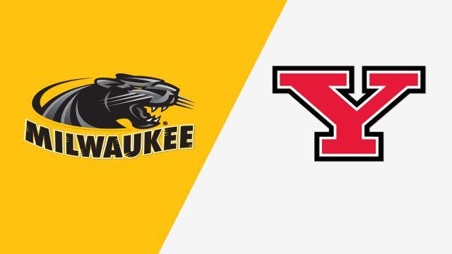 Milwaukee vs. Youngstown State (Game 5) (Horizon League Baseball Championship)