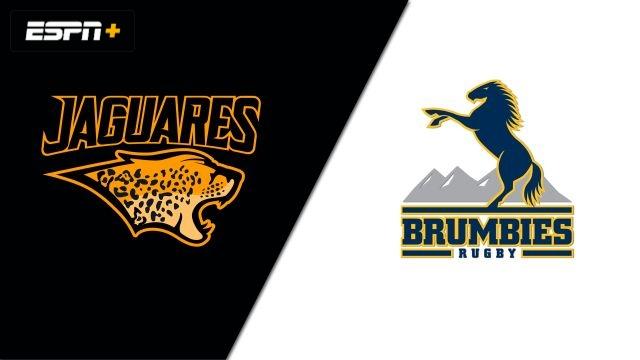 Jaguares vs. Brumbies (Semifinal) (Super Rugby)