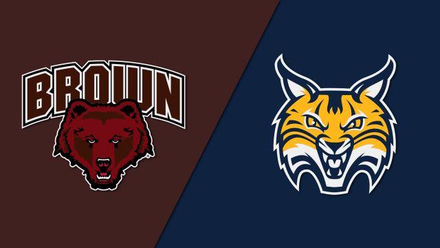 Brown vs. Quinnipiac (W Hockey)
