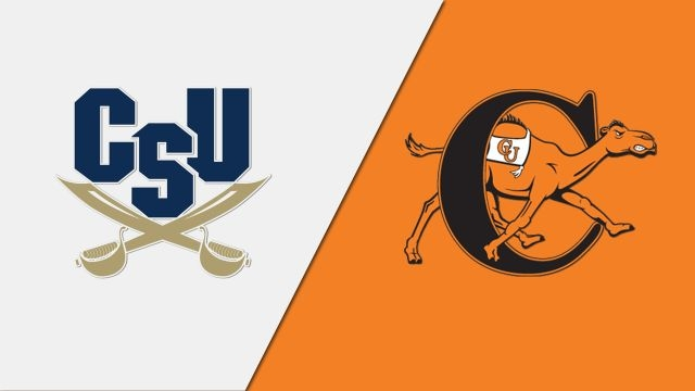 Charleston Southern vs. Campbell (Game 8) (Baseball)