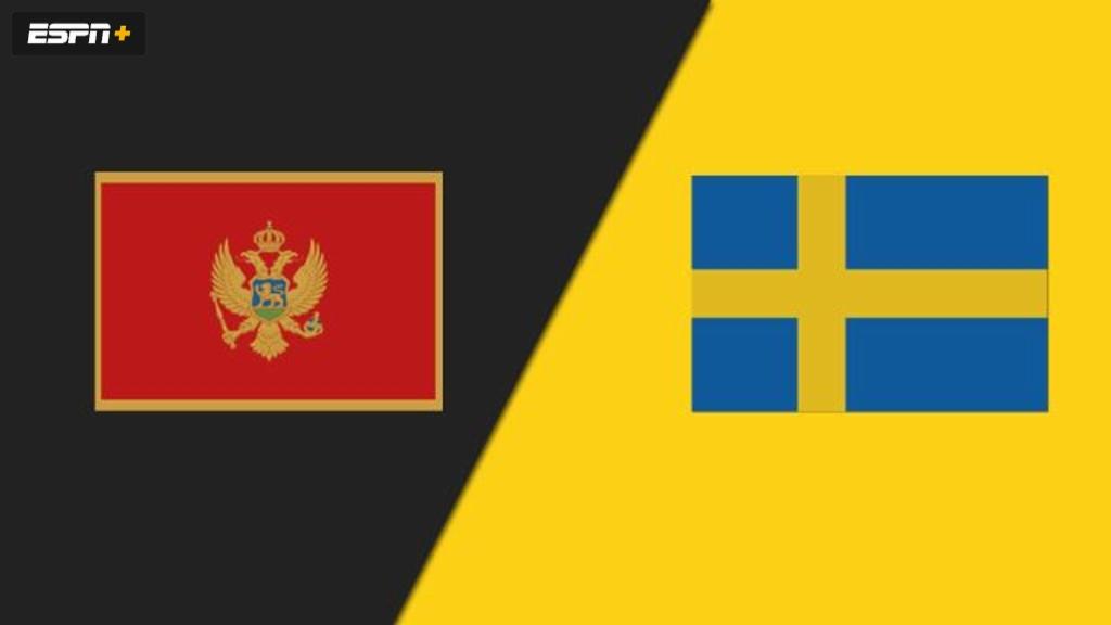 Montenegro vs. Sweden (Group Phase) (FIBA Women's EuroBasket 2019)