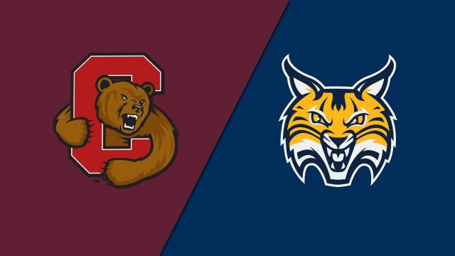 #6 Cornell vs. Quinnipiac (W Hockey)