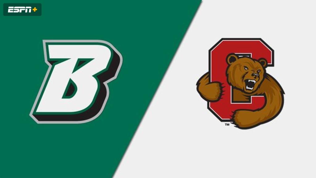 Binghamton vs. Cornell (Wrestling)