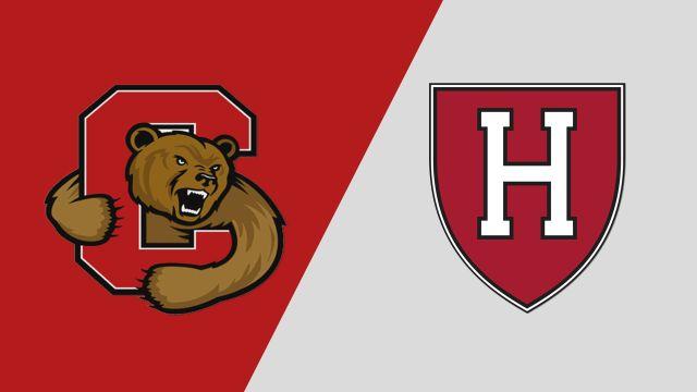 Cornell vs. Harvard (W Lacrosse)