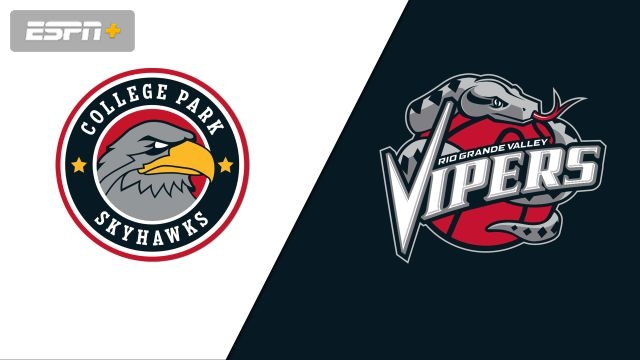 College Park SkyHawks vs. Rio Grande Valley Vipers