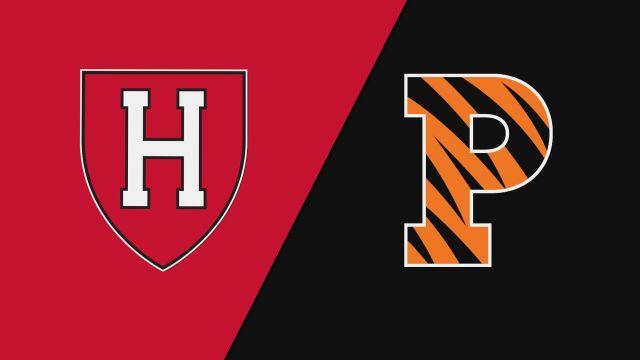 Harvard vs. Princeton (M Soccer)