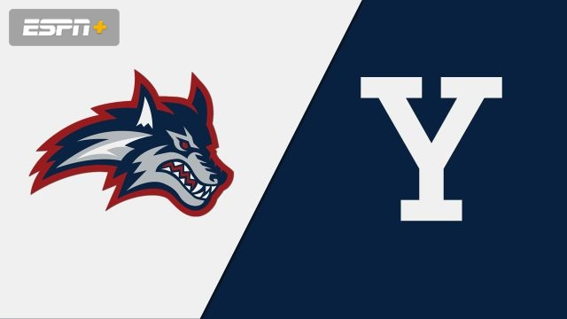 Stony Brook vs. Yale (M Soccer)