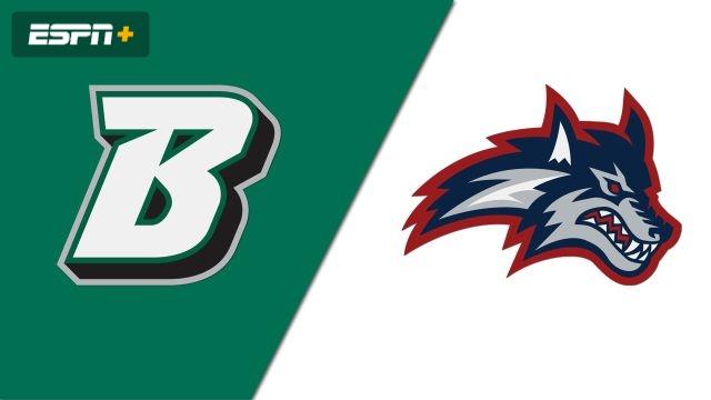 Binghamton vs. Stony Brook (M Basketball)