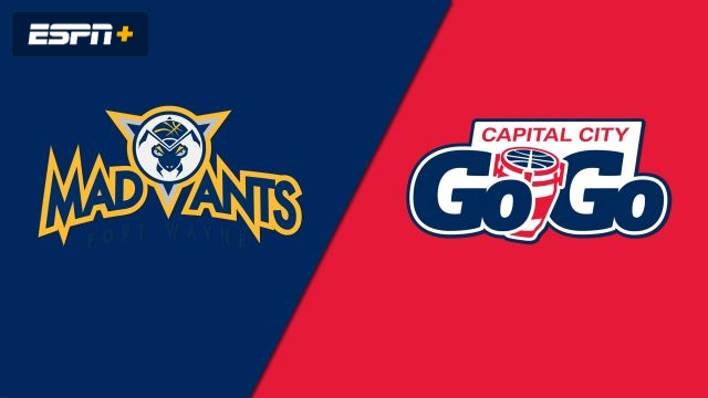 Fort Wayne Mad Ants vs. Capital City Go-Go