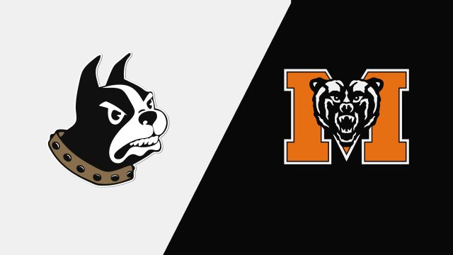 Wofford vs. Mercer (W Volleyball)
