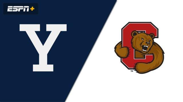Yale vs. #3 Cornell (W Hockey)