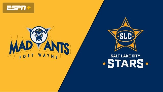 Fort Wayne Mad Ants vs. Salt Lake City Stars