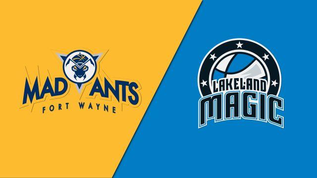 Fort Wayne Mad Ants vs. Lakeland Magic