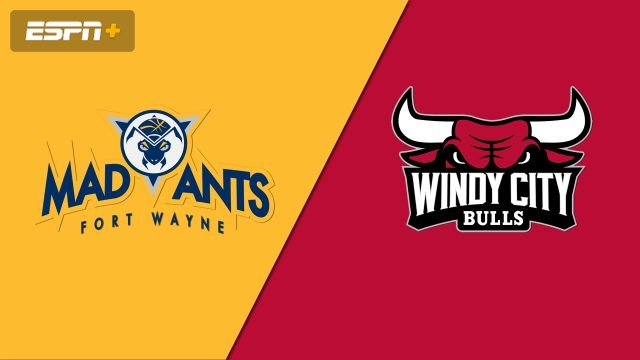 Fort Wayne Mad Ants vs. Windy City Bulls