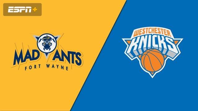 Fort Wayne Mad Ants vs. Westchester Knicks