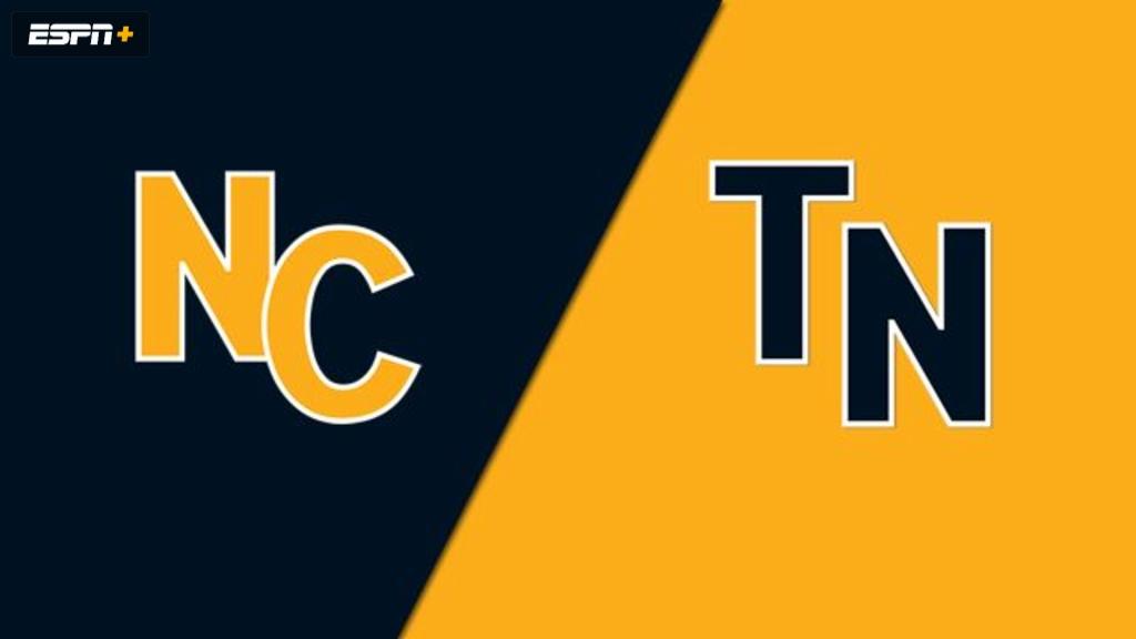 Salisbury NC vs. Gray, TN (Championship) (Little League Softball World Series)