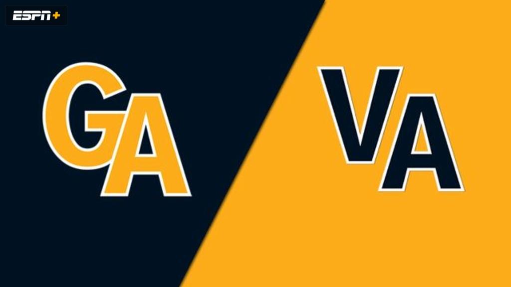 Peachtree City, GA vs. South Riding, VA (Southeast Regional) (Little League World Series)