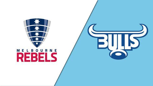 Rebels vs. Bulls