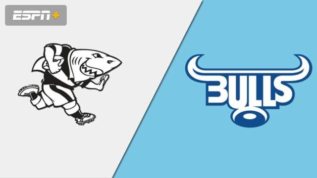 Sharks vs. Bulls (Super Rugby)